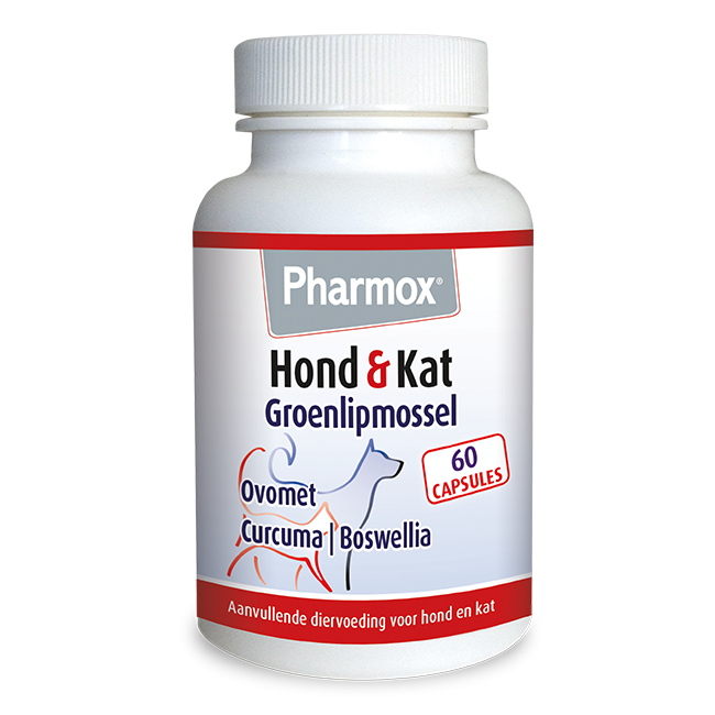 Foto van Pharmox Hond&Kat Groenlipmossel 60 capsules